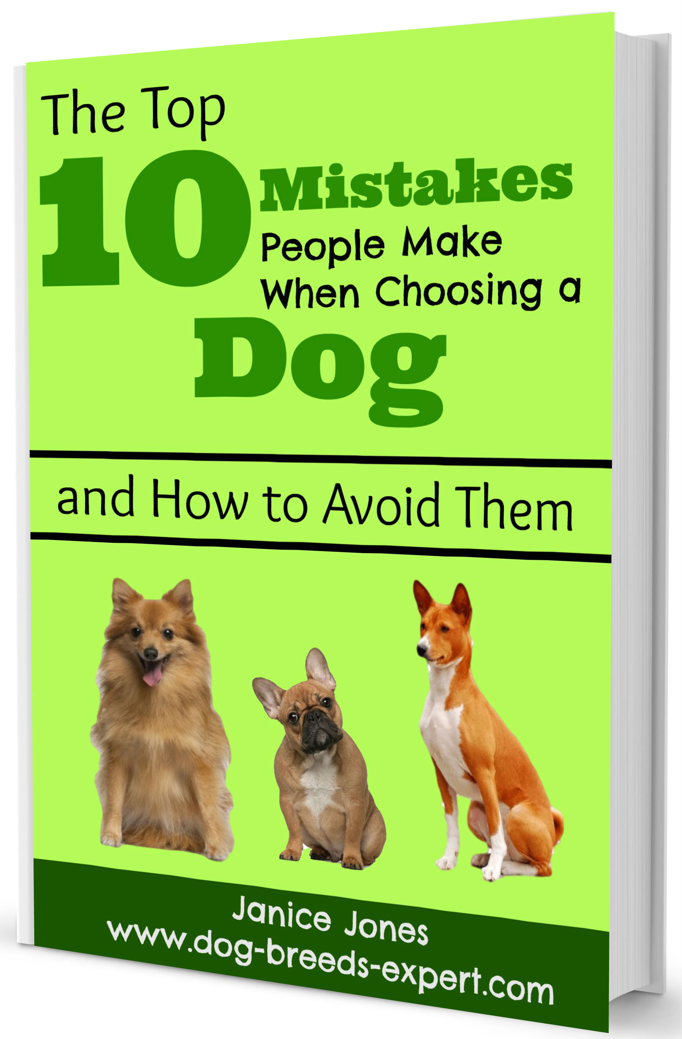 Ten Biggest Mistakes Ebook