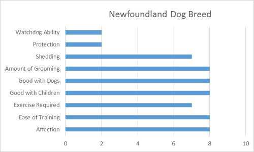Newfoundland Dog Breed Graph
