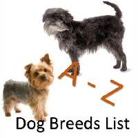 A to Z Dog Breeds List Link