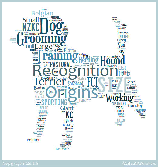 Dog Breed List B Word Cloud
