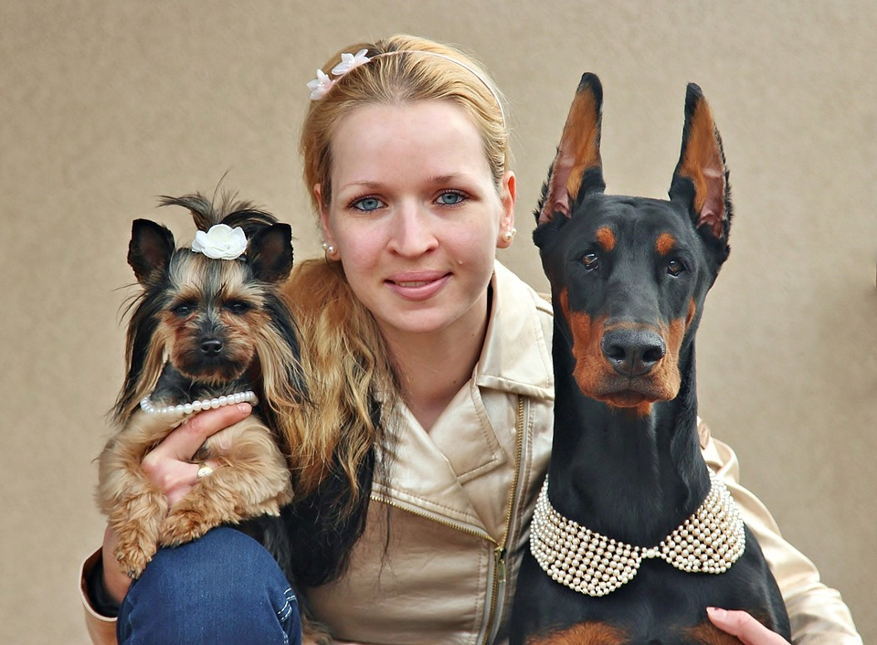 Girl with 2 healthy coat dogs