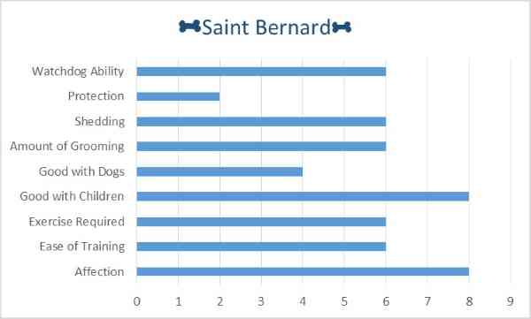 Breed Characteristics of the Saint Bernard