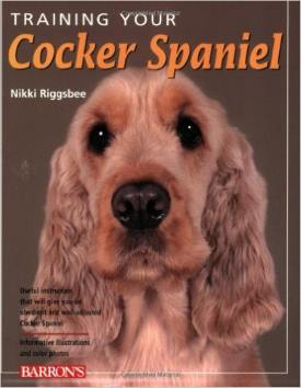 Training Your Cocker Spaniel