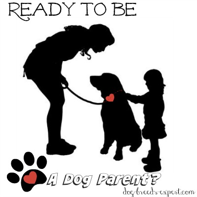 Ready for Dog ownership?